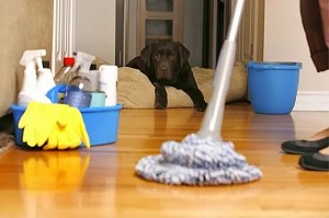 6 pasos imprescindibles para la limpieza general de primavera